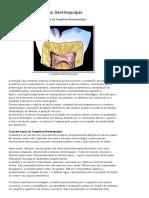 Proteção Do Complexo Dentinopulpar