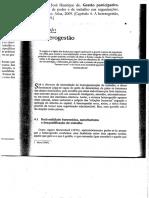 faria_2009_gestão participativa.pdf