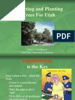 Trees for Utah