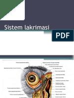 anatomi Sistem Lakrimasi