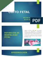 Óbito Fetal ginecologia