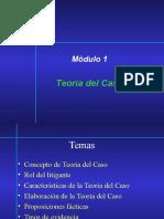 M1-Teoría del Caso.ppt
