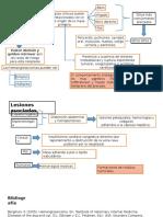 fisiopatologia AngioSarcoma