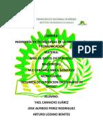 Exposicion Diccionario de Datos Resumen