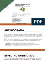 Antibiograma 2015 II