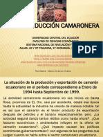 15 La Produccion Camaronera.