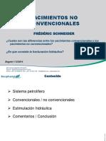 Yacimientos No Conventionales - Frédéric Schneider