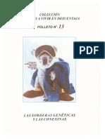 12 - Sordera Congenita y Conexinas