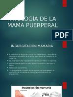 Patología de La Mama Puerperal