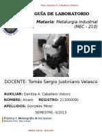 Guía de Laboratorio de Metalurgia