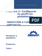 Practica 1 Config Perfil Dprl (2)