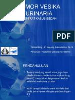 Tumor Vesika Urinaria