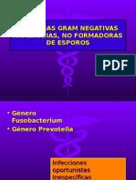 Clase Gram Negativas Anaerobias, No Formadoras De