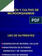NUTRICIÓN y cultivo