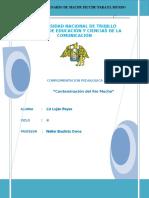 TRABAJO CONTAM   RIO MOCHE (2).doc