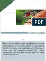 Ppt Virus Zika