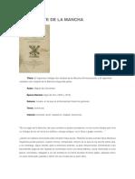Critica Literaria - Don Quijote