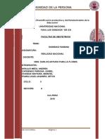 DIGNIDAD-MODIFICADO.docx