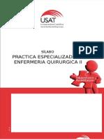 Silabo Practica Especializada II Ciclo Teorico (2) (1)