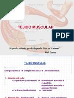 12a Clase-Tejido Muscular