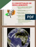 Cap. 1C Bases Medio Ambiente