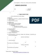 Histologia del Aparato Digestivo
