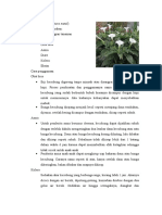 Med Plant