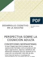 Desarrollo Cognitivo en La Adultez