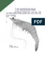 proyectodeinversioncamaron-130518194007-phpapp01