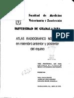 Ayala_Chavez_Raul.pdf