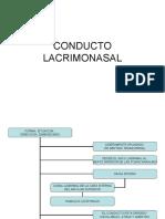 CONDUCTO LACRIMONASAL
