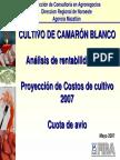 CAMARON ACUACULTURA Sinaloa-Rentabilidad 2006 Costos 2007