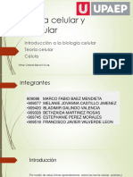 FICHERO DE CELULA.pdf