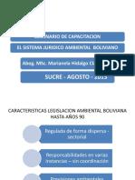 Cap. 3 a Aplicacion Del Reglamento Ambiental
