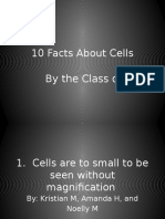 10 Fact About Cells
