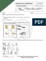 MATEMATICAS GRADO3.pdf