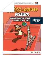 Documento Orientador Voleibol