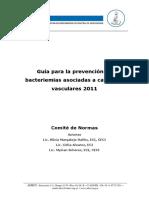 Guia Adeci Prevencion de Bac 2013