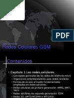 Capítulo 1 GSM