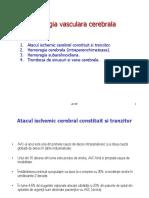 Patologia Vasculara Cerebrala Ischemica Text 2016