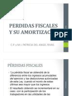 Perdidas Fiscales y Su Amortizacion