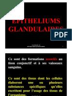 2 e Glandulaires Diapos
