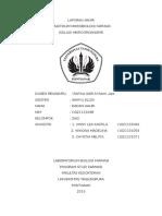 Cover Laporan Mikrobiologi Farmasi