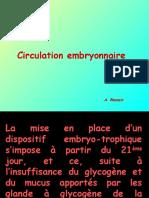 Circulation Embryonnaire