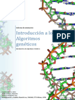 Introduccic3b3n a Los Algoritmos Genc3a9ticos p
