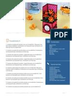 BoxCard Flores PasoaPaso