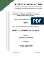 Analisis de la campaña de esterilizacion a bajo costo en Xalapa, Veracruz.