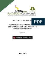 Felino Proceeding2013