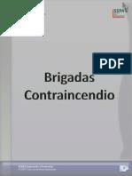 Manual Brigadas Contraincendio 080110