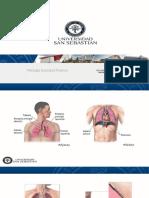 Quirúrgico Torácico.pdf